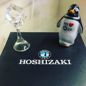 Suppliers of Hoshizaki ice